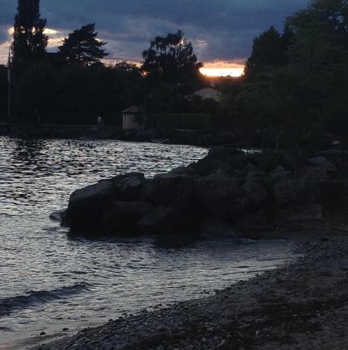 Léman soir 1.jpg