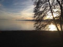 Lac Léman 5.jpg