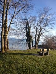 Lac Léman 12.jpg