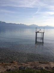 Lac Léman 1.jpg