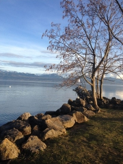 Lac Léman 6.jpg