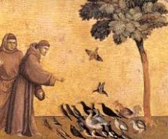 Giotto saint-françois.png