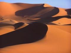 dunes 33.jpg
